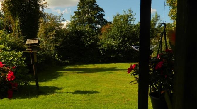 Vrije plaatsen plaats plek camping rianto warmond kagerplassen bollenstreek zuid-holland groen ruim kavel privacy