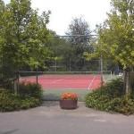 tennissen tennisbaan rianto warmond